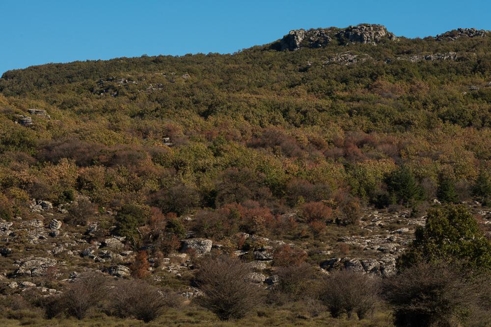 Bolotana, Workshop fotografico sul paesaggio organizzato dalla coop. Omnia Green Services