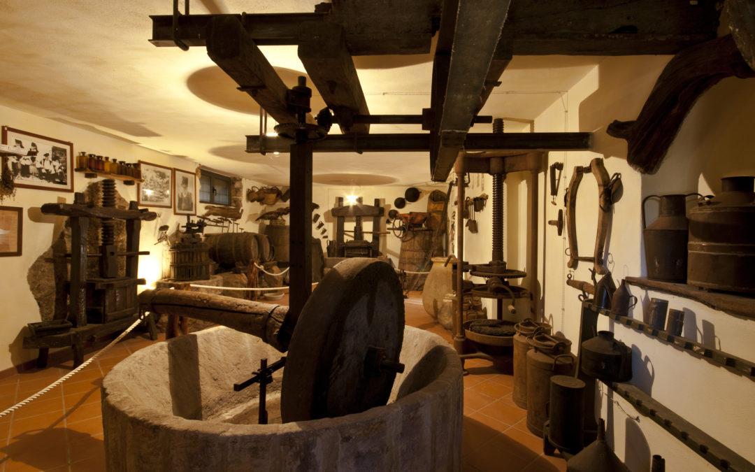 Il Parco Museo S'Abba Frisca è il primo museo privato riconosciuto dalla Regione Sardegna